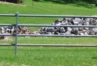 Angas Plains Tubular fencing 19